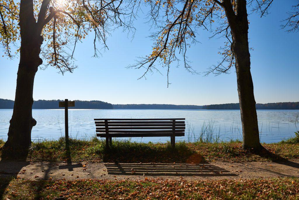 Bank am See im Herbst bei Sonne